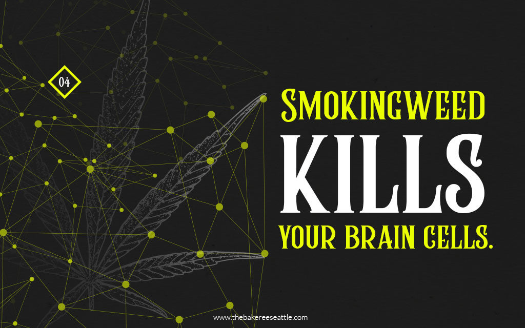 Smoking weed kills your brain cells.-TheBarkee (1)