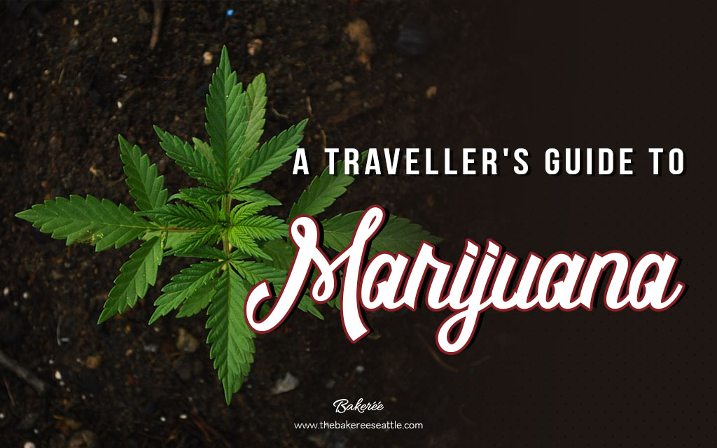 A Traveller's Guide To Marijuana
