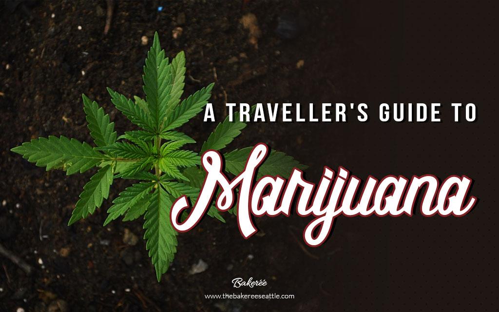 A Traveller's Guide To Marijuana