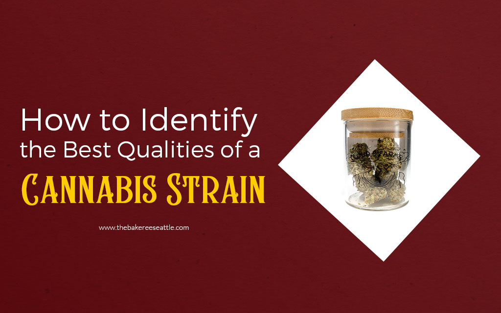 How to Identify the Best Qualities of a Cannabis Strain