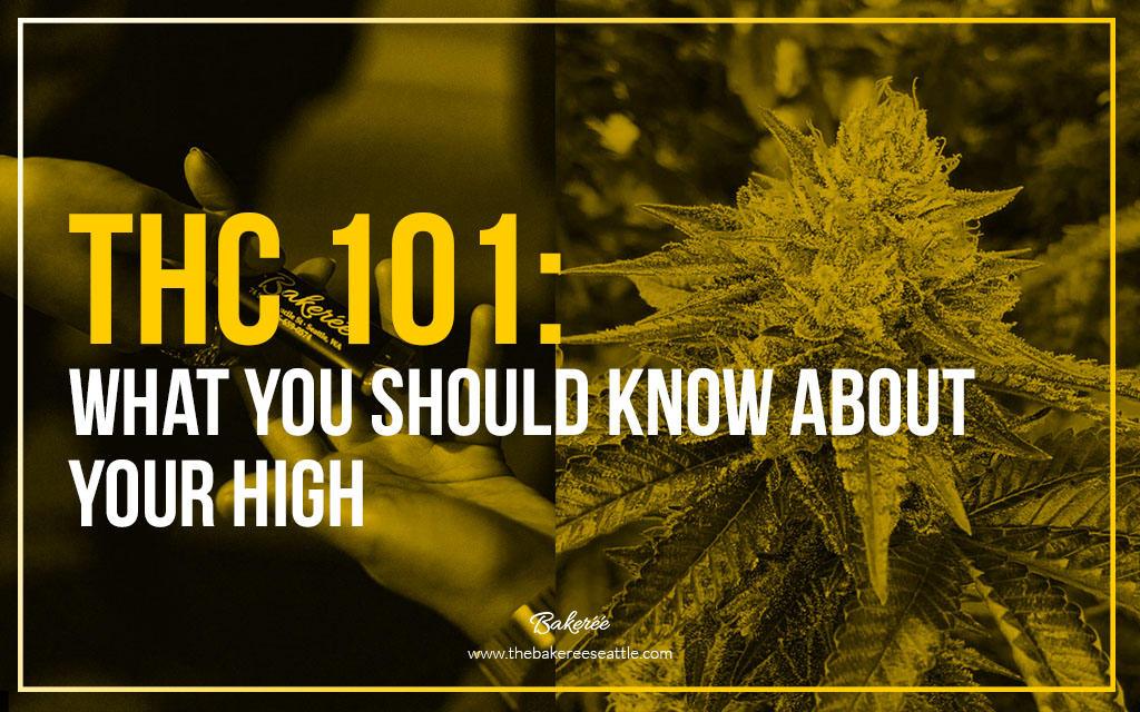THC 101: What You Should Know About Your High