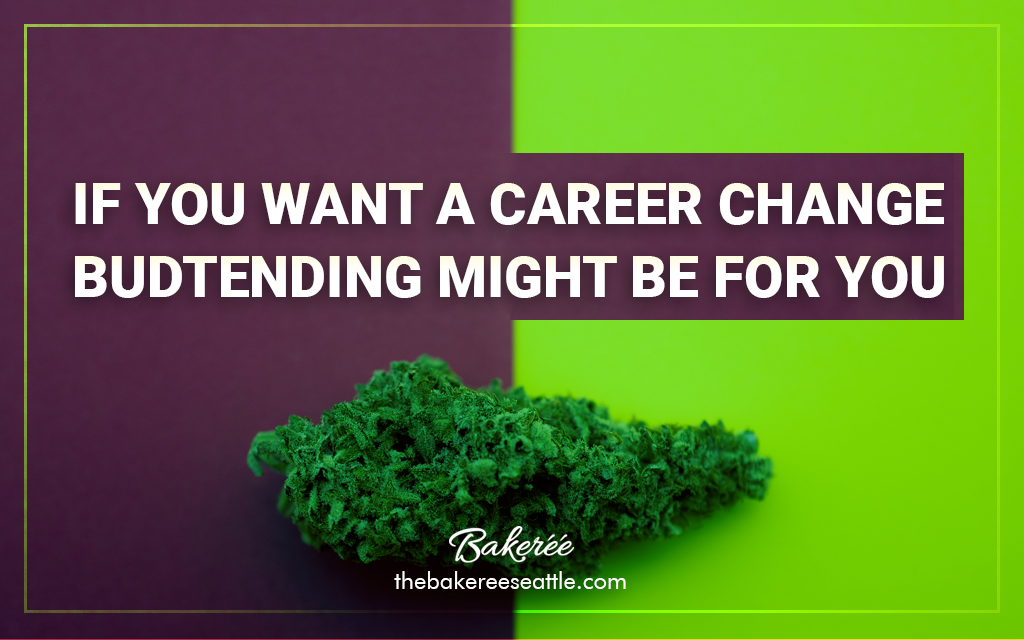 If You Want a Career Change, Budtending Might Be For You